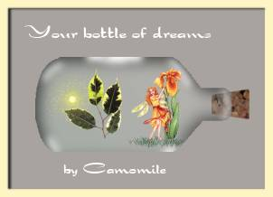 Bottle of Dreams - May all your Dreams come true