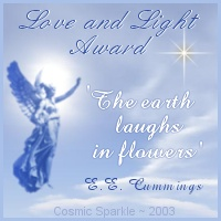 Caroline at Cosmic Sparkle created this very beautiful award especially for me, to honor my two lost pregnancies. Please visit her beautiful site!