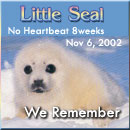Little Seal - visit my pregnancy loss memorial quilt