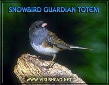 Snowbird Guardian Totem Feb 3 2002